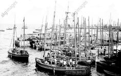 Penzance, Fishing Boats 1890 The Francis Frith Collection