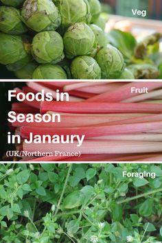 Foods in season in January