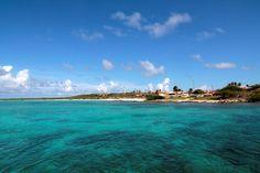 Mare cristallino che circonda l'isola di Aruba