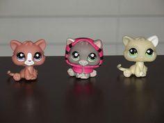Littlest Pet Shop Cat Lot, 9 Kittens, No Doubles, Rare, Free Ship, Adult Owner | eBay