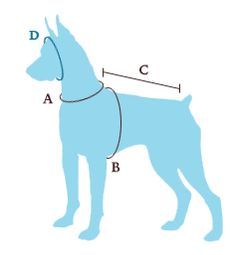 Moondoggie Dog Boutique - How to Measure Your Dog... great instructions...