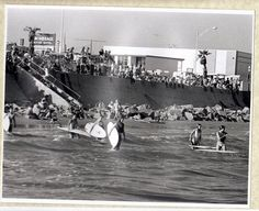 1967 B & W 6 Surfer Girls Surfing Photo Galveston by GipsyStyle, $20.00