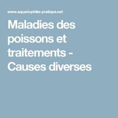 Maladies des poissons et traitements - Causes diverses