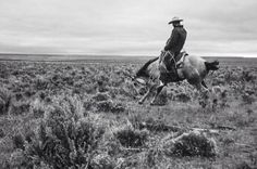 John Langmore: Open Range - Photographing America's Big Outfit Cowboys Cowboy Horse, Cowboy And Cowgirl, Cowboy Gear, Cowboy Images, Real Cowboys, Ranch Life, Le Far West, Horse Love, Old West