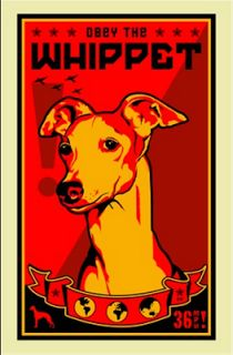 Whippet. Whippet Good. « Elements of Style Blog