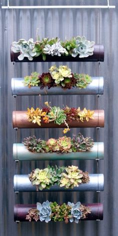 A Sleek, Modern Vertical Garden