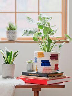 Plant Love: Colorful DIY Boho Fringe Planter Makeover