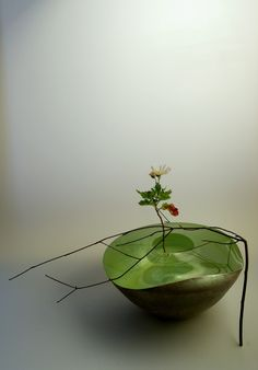 瀬沼健太郎「咲くやツンドラ」 空気感が落ち着く。