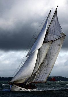 ⚓♡salt air⊰⛵    . Standing braced on the deck. Salt spray in my face. The hum of the backstay is a music few will hear..