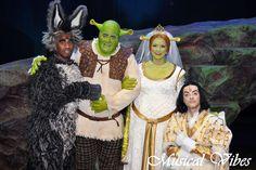 """Shrek"" the musical - Vlaanderen Shrek Wedding, Fairytale, Jr, Theater, Inspiration, Painting, Musicals, Fairy Tail, Biblical Inspiration"