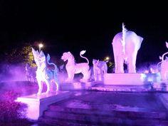 Night safari, Chiang Mai