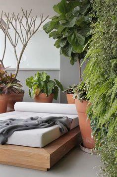 Projeto do arquiteto Nildo José (Foto: Divulgação) Outdoor Sofa, Outdoor Furniture, Outdoor Decor, Kitchen With High Ceilings, Micro Garden, Clay Pots, Apartment Design, Potted Plants, Pergola