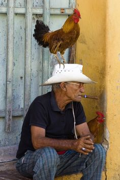 The rooster was not photoshopped wonderful real life travel photo More