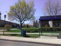 Primavera en Laval, Qc Canadá