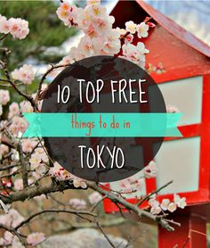 A few years back it was hard to imagine that travellers could afford to visit Japan on a budget. Due to its reputation for being one of the world's most expensive city, many crossed Tokyo off their bucket list. Must Do In Tokyo, Tokyo Things To Do, Places In Tokyo, Free Things To Do, Places To Go, Japan Travel Tips, Tokyo Travel, Asia Travel, Visit Tokyo