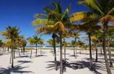 Crandon Park Beach in Key Biscayne South Beach, South Florida, Miami Beach, Miami Florida, Florida Beaches, Beach Trip, Beach Day, Key Biscayne Florida, Places