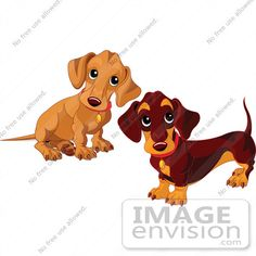 ... Clip Art Of Two Dachshund ...