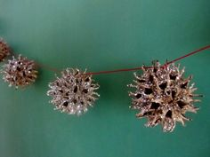 Sweet gum ball garland. Have seen these spray painted in wreaths too and they are gorgeous.