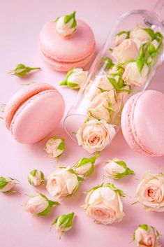 Gold Wallpaper Background, Wallpaper Iphone Cute, Pink Wallpaper, Flower Wallpaper, Disney Wallpaper, Macaroon Wallpaper, Pink Macaroons, Cool Backgrounds Wallpapers, Book Flowers