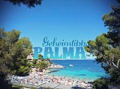 Hier findest du die noch authentischen Orte in Palma, die auch die Einheimischen lieben. Erkunde die Stadt mit diesen 15 Palma Tipps abseits des Ballermann.
