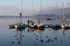 Il lago di viverone(foto Lina Franchi)