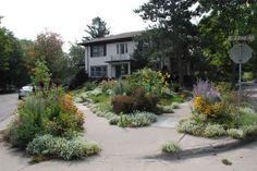 Boulevard Garden 2009  #garden_awards #residential_landscaping #gardening #boulevard_gardening #flowers #plants #native_plants