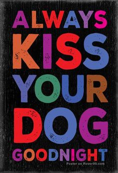 The perfect gift for dog lovers Always Kiss Your Dog Goodnight – Dog Quote Poster - Funny Dog I Love Dogs, Puppy Love, Cute Dogs, Cane Corso Italiano, Pet Sitter, Dog Poster, Schnauzers, Weimaraner, Dog Quotes