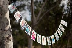 Month by month photo banner for baby girls 1st birthday party, only problem is I have to many photos to choose from!