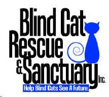 Blind Cat Rescue - Meet The cats