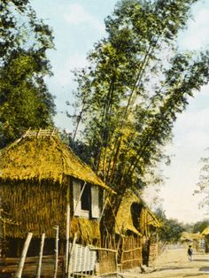 Philippines, Manila | Traditional Bamboo Stilt Houses | Print on Art com