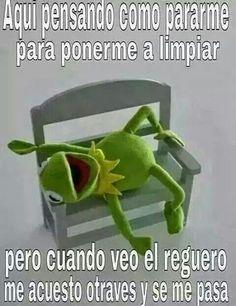 368 Best Memes De La Rana Images Humor Mexican Humor Memes