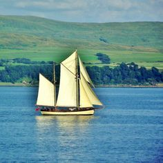 Sailing by James Bullis-King