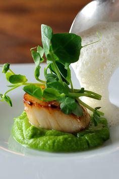 This amazing scallop recipe from Chris Horridge elevates a simple dish into something truly memorable. The combination of sweet scallops, peas, crunchy pea shoots and piquant cumin foam is sure to wow at any dinner party Fish Recipes, Seafood Recipes, Gourmet Recipes, Cooking Recipes, Seafood Appetizers, Clam Recipes, Gourmet Foods, Appetizer Recipes, Asian Desserts