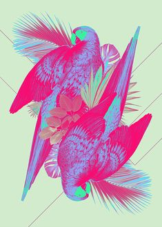 Print by Ricardo Garcia. The vibrant parrots are even more vibrant than their real life counterparts. I love the neons used here taking the already bright colored tropical subject matter over the top with color.