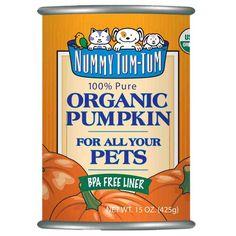 Nummy Tum Tum Pumpkin Canned Dog & Cat Food