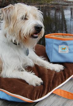 Our highly versatile and fashionable Jennifer Brooks Travel Tote Pet Bed is easy to transport and store, and gives your pet the comfort of his own bed anywhere you go. Large side pockets hold necessities like food and toys.