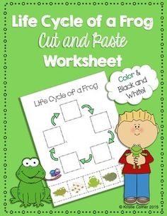 This FREE frog life cycle cut-and-paste worksheet is a fun science activity for elementary students. This five-part life cycle includes eggs, a tadpole, a tadpole with legs, a frog with a tail, and an adult frog. The pieces on the bottom are mixed up so students are able to place them in the correct order.  A color copy AND a black and white copy are included. This can be used for guided practice, centers, or even as an assessment. I used this during my student teaching experience with…