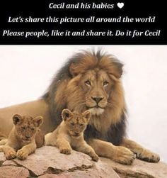 Cecil  and  his family