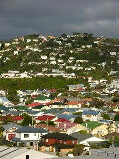 Wellington, North Island, New Zealand Copyright: Fred Floch Wonderful Places, Great Places, Places To Go, Capital Of New Zealand, Chatham Islands, New Zealand Architecture, New Zealand Landscape, Kiwiana, The Beautiful Country