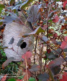 Fall ~ Birdhouse in the Ninebark (Garden of Len & Barb Rosen)