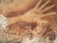 Handprint stencil found on cave wall in Indonesia dated to at least 40,000 years
