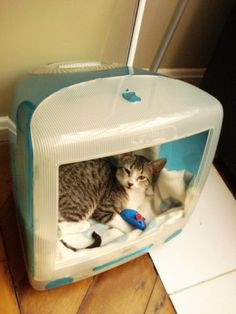 kitty house made out of an old mac computer. so cute