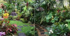 Una de las claves esenciales para que nuestros jardines destaquen es el follaje. ¡Porque los detalles importan!