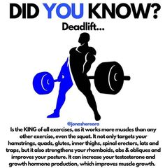A lot of people avoid the deadlift because they think it's dangerous, but it's actually a very safe exercise (if you learn proper form first, before increasing weights AS YOU SHOULD do with any. Fitness Models, Tips Fitness, Fitness Life, Muscle Fitness, Fitness Workouts, Workout Fitness, Yoga Fitness, Biceps, Deadlift Variations