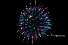 https://flic.kr/p/QGwGtG | Fireworks! [Brilliant Colors 015_5962] | Site: edeevo.com  Buy: etsy.com/shop/eDeaverPhotography Like: facebook.com/eDeaverPhotography View: flickr.com/photos/edeevo