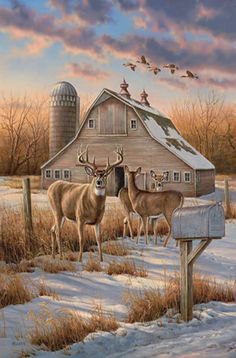 Beautiful Picture.... Of Deer, Farm Mail Box, Barn & Silo With Ducks Flying Over & Snow On The Ground...Just Flat Don't Come More Country Then This!