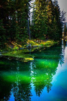 ✯ Yellowstone National Park - Wyoming