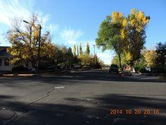 Fall colors in downtown Flagstaff, Arizona
