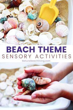 Seashells Sensory Bin - Ocean Theme Preschool - Natural Beach Living Summer Crafts For Kids, Summer Activities For Kids, Ocean Activities, Preschool Activities, Sensory Bins, Sensory Play, Boredom Busters For Kids, Kids Study, Ocean Themes