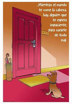 Love My Dog, Puppy Love, Amor Animal, Mundo Animal, Pug, Chihuahua, Dog Quotes, Animal Quotes, Life Quotes